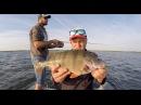 Высокие частоты ВВ ЧАСТЬ1 (Рыбалка на Весёловском водохранилище, Маныч)