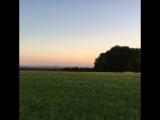 Панорама Кёльн. Природа