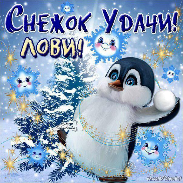 Зимний привет! Лови снежок удачи!