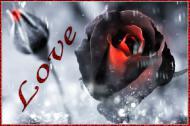 любовь,подарок