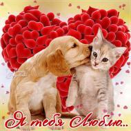 Я люблю тебя!