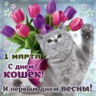 Весна!1 марта-день кошек!