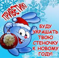 зима, новый год, 2015