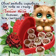 Люблю тебя! С 14 февраля!