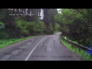 Лес упал на машину