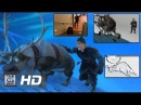 CGI Animation Breakdowns Walt Disney s Frozen Shot Progression Sven by Daniel Peixe