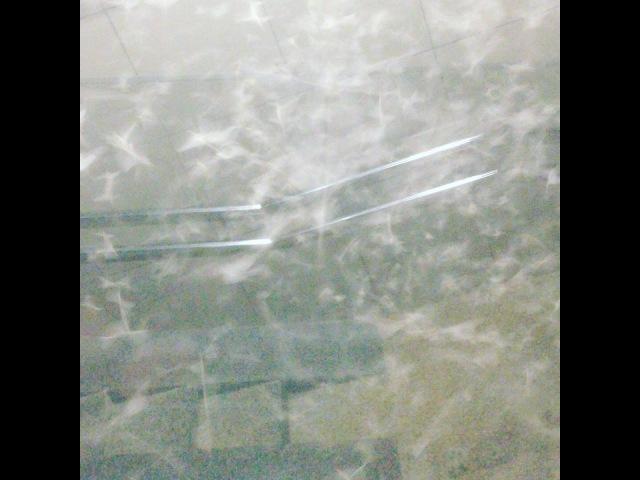 нашествие мотыльков Могилев 09.08.17