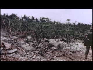 US Marines fire flamethrowers and kill a Japanese soldier on Peleliu Island, Pala...HD Stock Footage