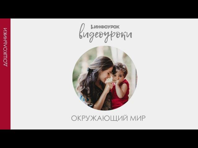 Путешествие по Москве   Дошкольники   Окружающий мир 32   Инфоурок