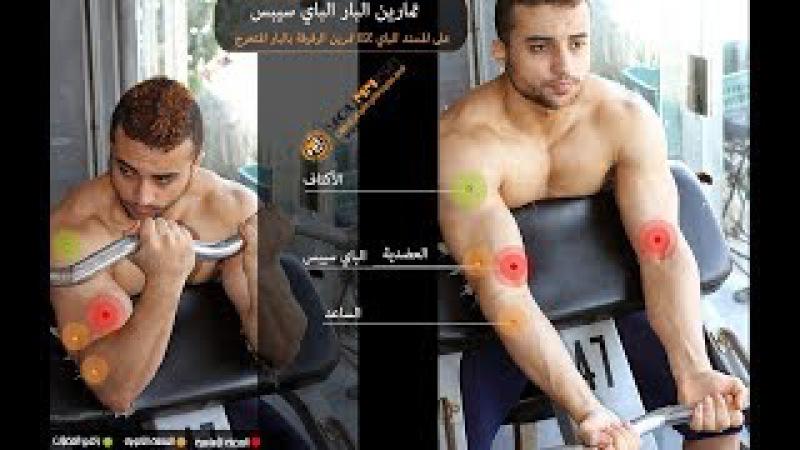 أفضل تمارين لتضخيم عضلات الذراع تمرين الر16