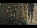 Молчаливые деревья Короткометражная фантастика