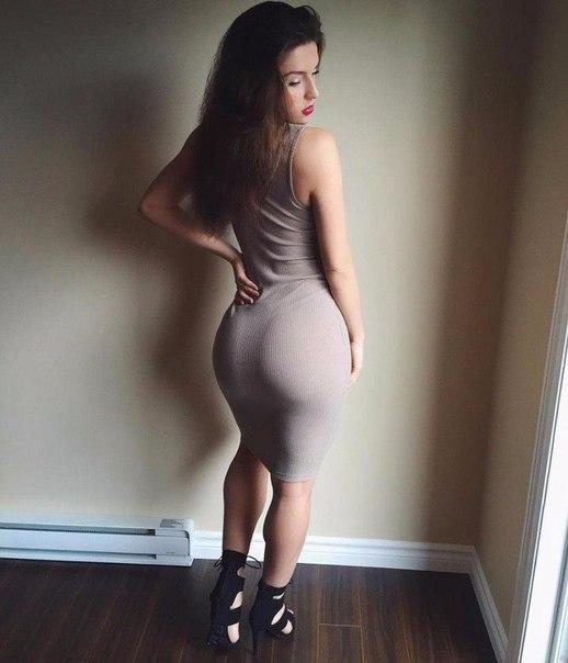 She male ass