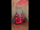 Елки в Зимнем дворце в зале перед Эрмитажным театром.