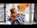 Best Music Mix 2016 13 ♫ 1H Gaming Music ♫ Dubstep, Electro House, EDM, Trap