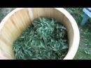 Иван чай и роллер из липовых реек экологически чистая технология