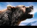 National Geographic Дикий Запад. Звериный вестерн. Документальные фильмы про животных.