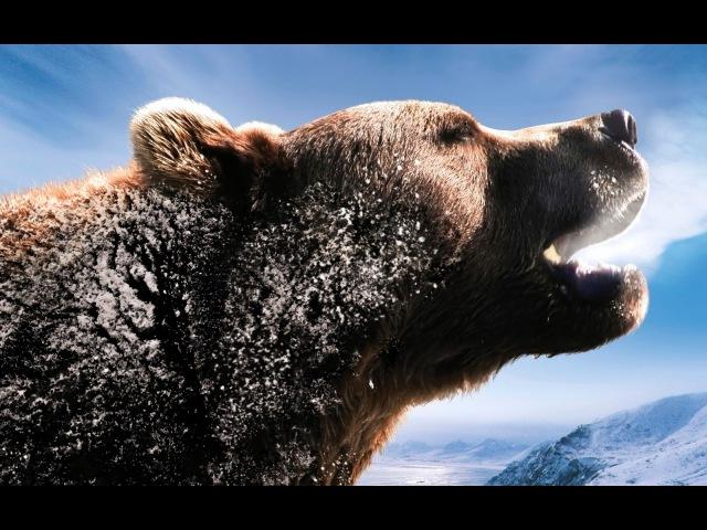 National Geographic Дикий Запад Звериный вестерн Документальные фильмы про животных