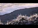 Иней на реке Лапке в Ржевском лесопарке