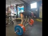 Krawczyk Bryce, тяга 320,340 и 360 кг