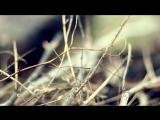 Чаян Фамали - Когда я умру