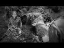 Военный короткометражный фильм «Первый и последний».