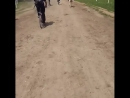 белорусская коррида