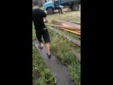 Николай Смолин - Live