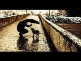 Валентин Гафт.Стихотворение Пёс