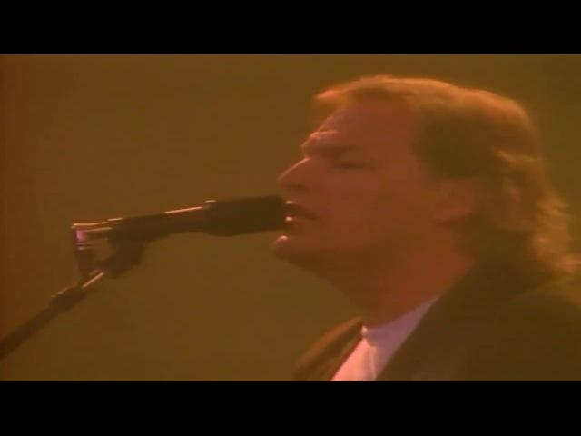 Pink Floyd - Sorrow (1988, Delicate Sound of Thunder, Enhanced)