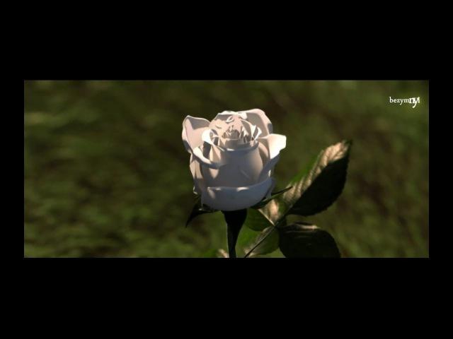 Tony Igy - Melodramatik (Luxesonix Remix) [Video Edit]