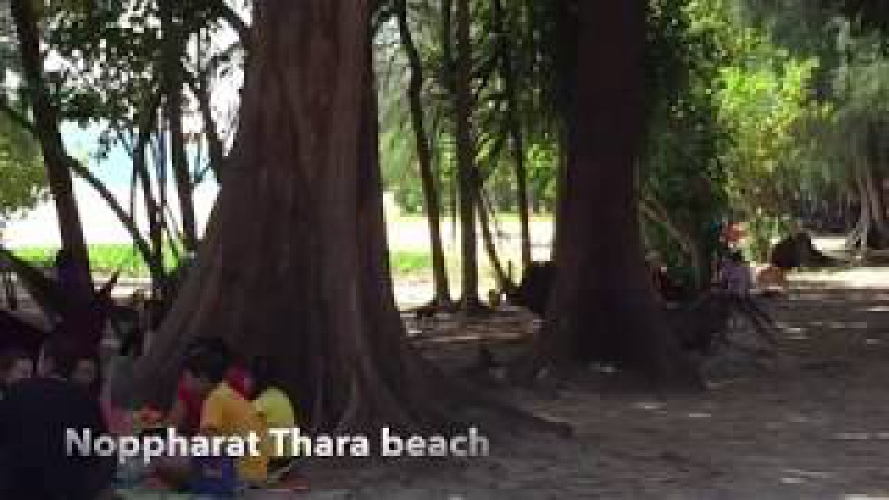 Пляжи Таиланда Noppharat Thara beach в Краби