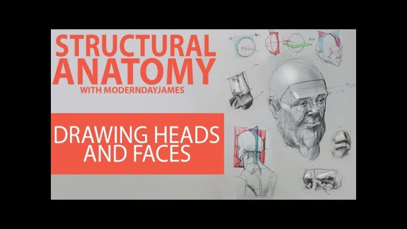 STRUCTURAL ANATOMY: Drawing the Head