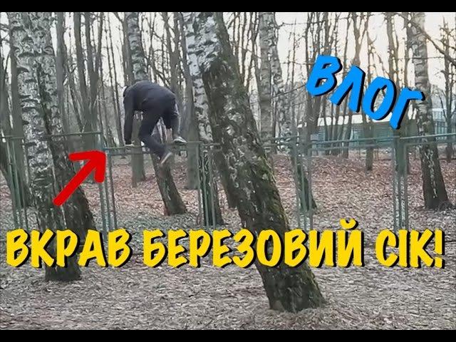 ВЛОГ: Вкрав березовий сік, нагодували благорного оленя! / Сергій Риженко