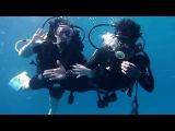 Погружение с аквалангом. Анна Киркорова. Египет. Красное море
