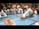 Arte negra BETINHO atual capoeira