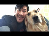 A Day With Chica - Part 1