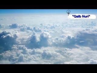 (Abdulloh Domla) Ota-Onaga E'tibor ● {Абдуллоҳ Домла} Ота-Онага Эътибор