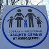 Санкт-Петербург против жестокости