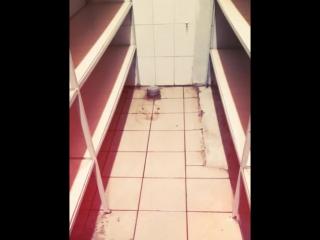 Процесс уборки магазина электротоваров и результаты