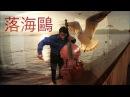 Xavier Foley - 落海鷗 (The Falling Seagull)