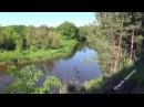 Природа. Лес. Река. Утро. Пение Птиц. Звуки природы. Релакс. Медитация. Сон.