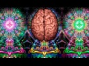 Recharge Brain Batteries Activation Frequency 5000Hz 8000Hz Spiritual Awakening Meditation Music
