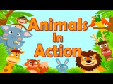 Animals In Action  Brain &amp Body Builders  Exercise &amp Fitness for Kids  Jack Hartmann