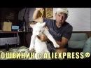 Домашние Животные в США, Законы, Ошейник с Aliexpress Кошки или Собаки