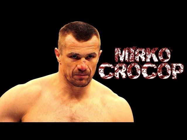Мирко Крокоп все нокауты