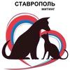 СТАВРОПОЛЬ   МИТИНГ за ЗАЩИТУ ЖИВОТНЫХ 25/26.03