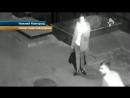 Погнавшиеся за кошкой хулиганы разломали ворота в Нижнем Новгороде