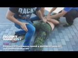 Боевику-атошнику вломили  в Днепропетровске