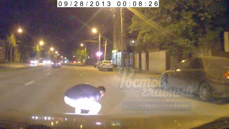 Намеренно сбили собаку переходившую дорогу на зеленый сигнал светофора В Ростове на Портовой