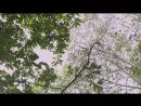 Аран и Магистрат серия 16 из 20.2012 Южная Корея